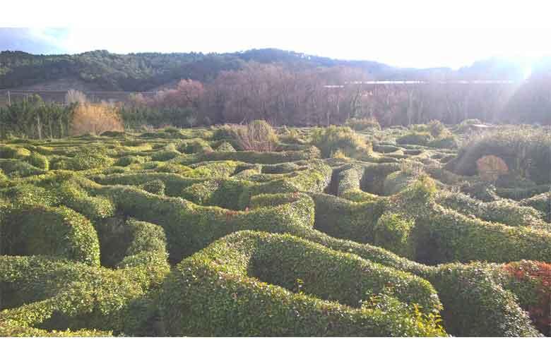 Le parc du labyrinthe géant