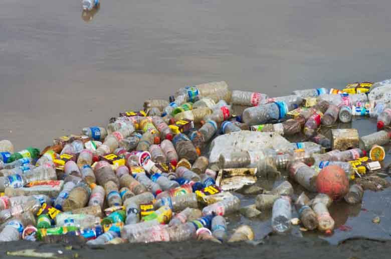 Grand nettoyage de la plage des Catalans