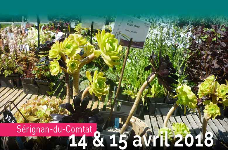 Fête des plantes à Sérignan-du-Comtat