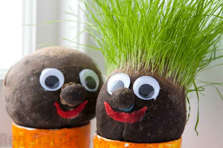 Création d'un bonhomme avec des cheveux en herbe