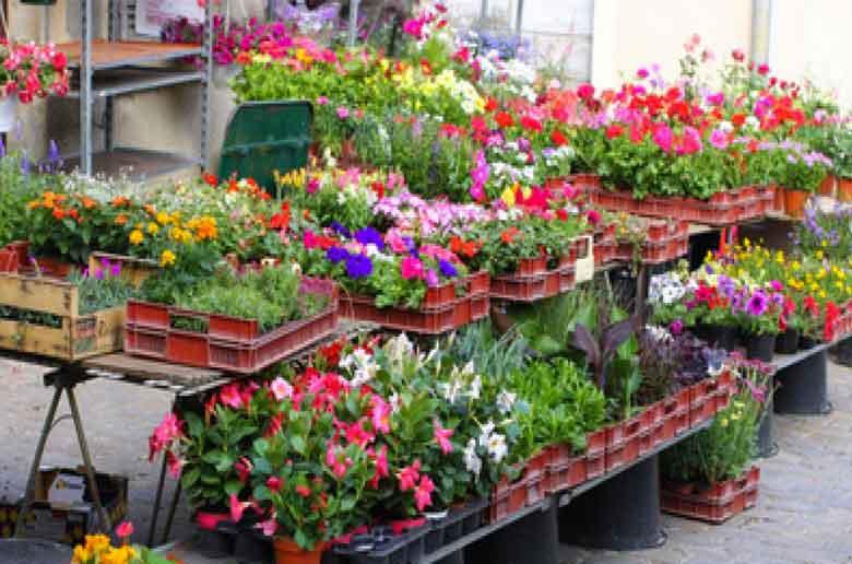 Fête des plantes et des fleurs à Allauch