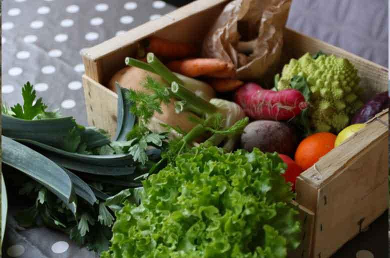 Cueillette de fruits et légumes à Aix-en-Provence