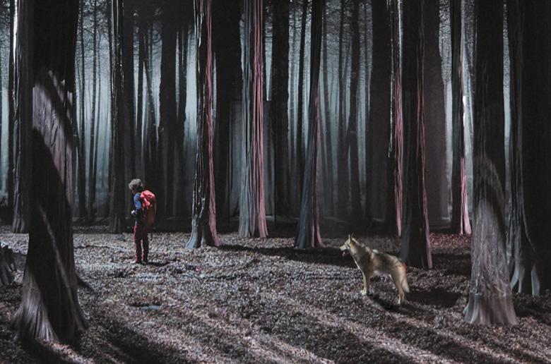 Le Bruit des Loups